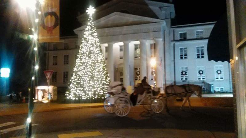 carriage rides 2