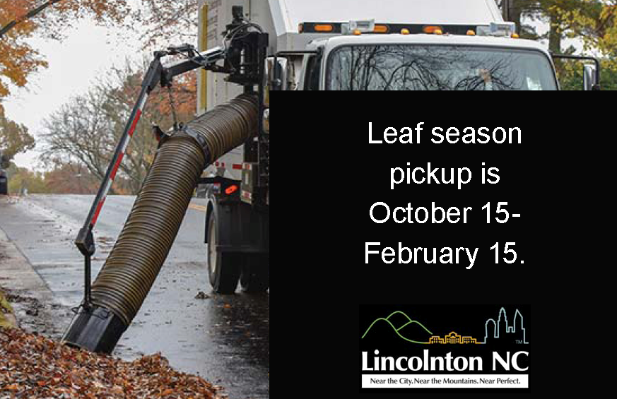 leaf season graphic