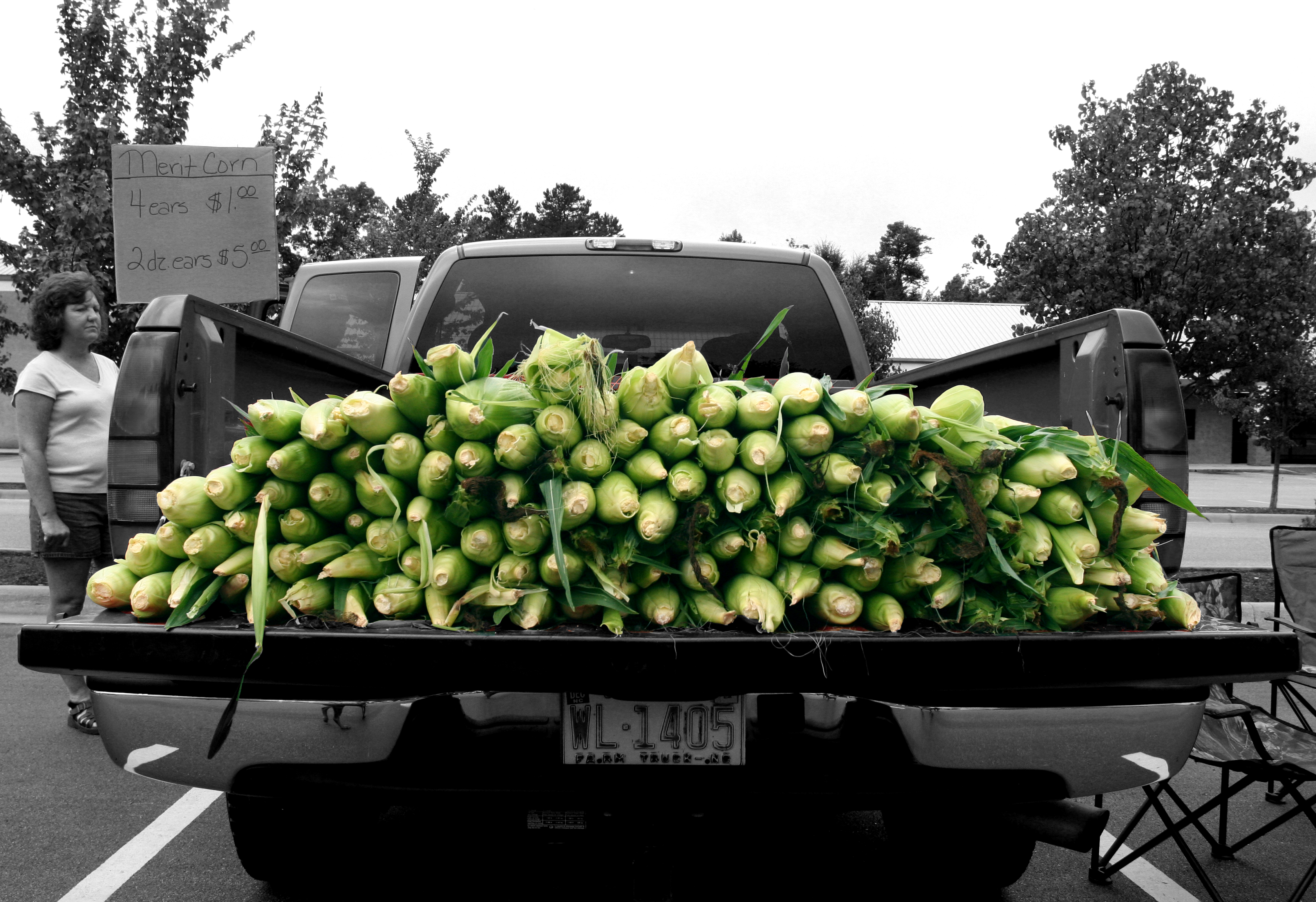 Fresh corn in the back of a truck